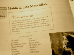 Spanish Book, Dos Mundos